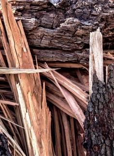 spintery wood
